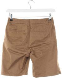 Closed Shorts - Braun