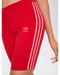 adidas Originals Shorts 'Cycling' - Rot