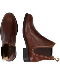 GANT Chelsea Boots 'Ainsley' - Mehrfarbig