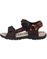 Geox Sandalen - Mehrfarbig