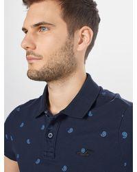 Hollister Poloshirt - Blau