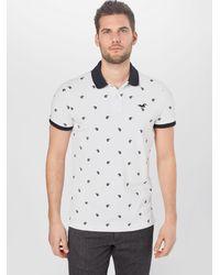 Hollister Poloshirt - Grau