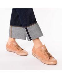 Candice Cooper Sneakers Low - Braun
