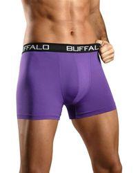 Buffalo Boxer - Lila
