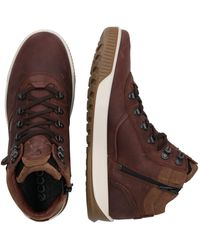 Ecco Sneaker 'BYWAY TRED' - Braun