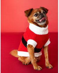 Accessorize Red, Black And White Santa Dog Jumper Red, Size: L