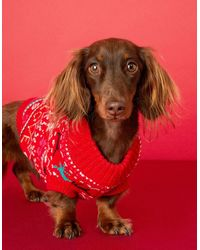 Accessorize Red, Blue And White Fair Isle Love Chirstmas Dog Jumper, Size: Xs