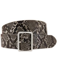 Accessorize - Square Buckle Snake Jeans Belt - Lyst