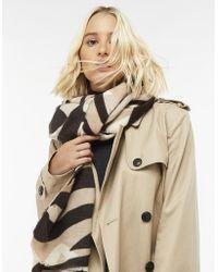 Accessorize - Zebra Print Blanket Scarf - Lyst