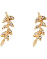 Accessorize - Crystal Vine Leaf Stud Earrings - Lyst