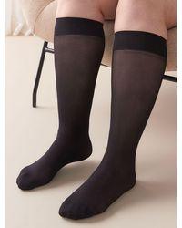 Addition Elle Pack Of 3 Solid Trouser Socks - Black