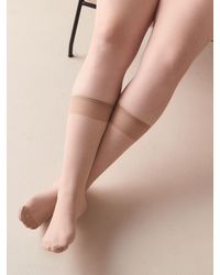 Addition Elle 3 Pairs Of Solid Knee High Nylons - Multicolor