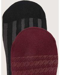 Addition Elle 2 Pairs Of Sheer Houndstooth & Stripe Socks - Multicolor