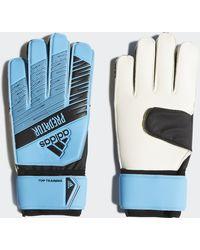 adidas Predator Top Training Handschoenen - Blauw