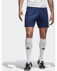 6a7dd39a9eef6 adidas Blue Tnt Shorts - Mens Xl in Blue for Men - Lyst