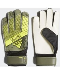 adidas Gants Predator Training - Vert
