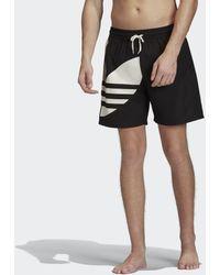 adidas Big Trefoil Swim Short - Zwart