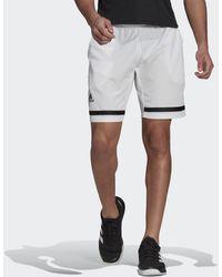adidas Tennis Club Shorts - Weiß