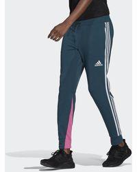 adidas Sportswear Lightweight Broek - Blauw