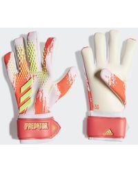 adidas Predator 20 League Handschoenen - Meerkleurig