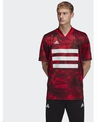 adidas Maglia TAN Graphic - Rosso