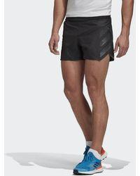 adidas Terrex Agravic Split Short - Zwart
