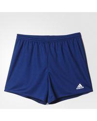 adidas Short Parma 16 - Blu