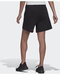 adidas Sportswear Studio Lounge Fleece Shorts - Schwarz