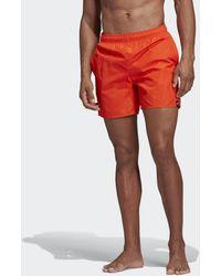 adidas Short da nuoto Solid - Arancione