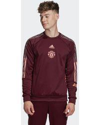 adidas Manchester United Travel Sweatshirt - Paars