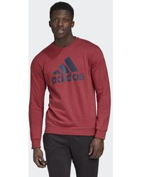 adidas Favorites Graphic Sweatshirt - Rot