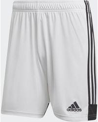 adidas Pantalón corto Tastigo 19 - Blanco