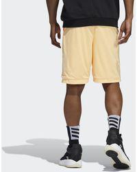 adidas Donovan Mitchell Short - Oranje