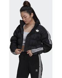 adidas Short Synthetic Donsjack - Zwart