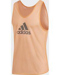 adidas Training Hesje - Meerkleurig