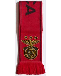 adidas Benfica Sjaal - Rood