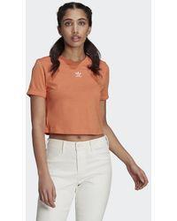 adidas Adicolor Classics Roll-up Sleeve Croptop - Oranje