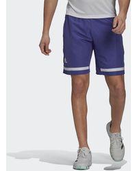 adidas Tennis Club Shorts - Lila