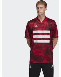 adidas Camiseta TAN Graphic - Rojo