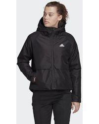 adidas Dp Insulated Winter Jack - Zwart