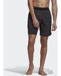adidas Check Clx Zwemshort - Zwart