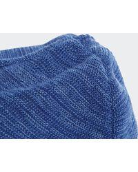 adidas Dsv Logo Beanie - Blauw