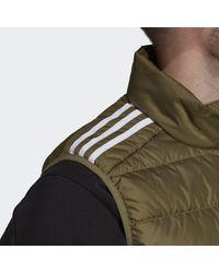 adidas Essentials Donsbodywarmer - Groen