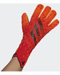 adidas Predator Pro Keepershandschoenen - Rood