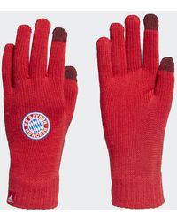 adidas Fc Bayern München Handschoenen - Rood