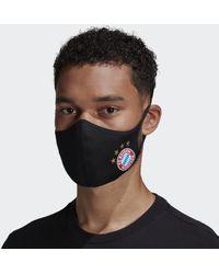 adidas Fc Bayern München Mondkapjes M/l 3-pack - Zwart