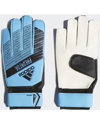 adidas Gants Predator Training - Bleu