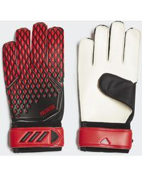 adidas Guantes de portero Predator 20 Training - Rojo