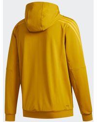 adidas Chaqueta con capucha AEROREADY Cold Weather Knit 3 bandas - Metálico