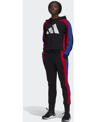adidas Sportswear Badge Of Sport Logo Trainingspak - Zwart
